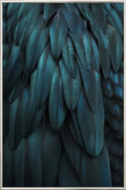 dark feathers as poster by monika strigel juniqe