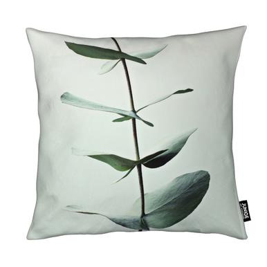 Eucalyptus Green Coussin