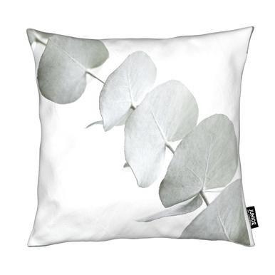 Eucalyptus White 3 Cushion