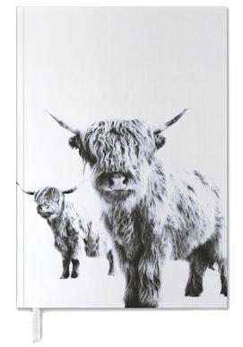 Highland Cows Personal Planner