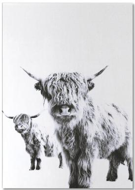 Highland Cows Notepad