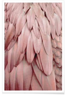 Pastel Feathers Poster