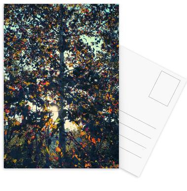 Autumn Language Postcard Set