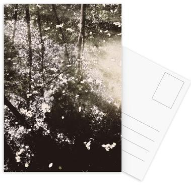 Tiergarten 4 Postcards