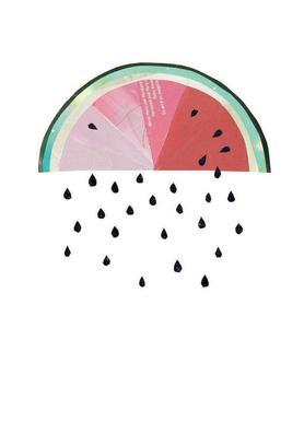 Melone Canvas Print