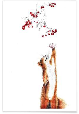 Squirrel affiche