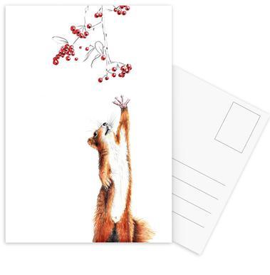 Squirrel Set de cartes postales