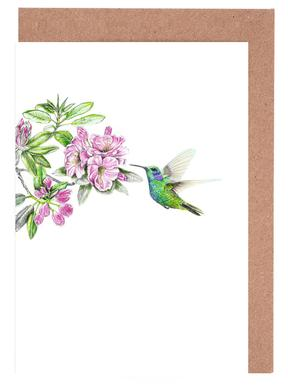 Hummingbirds greeting cards juniqe kolibri janine sommer greeting card set m4hsunfo