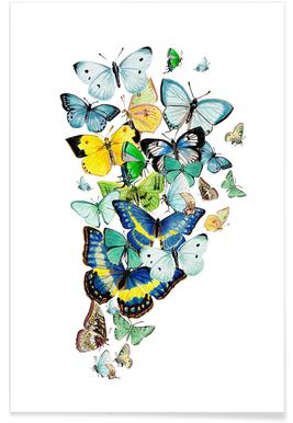 Schmetterlinge Blaugrün Poster