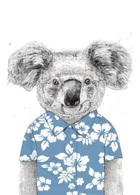 Summer Koala Blue Canvas Print