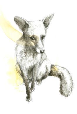Fox tableau en verre