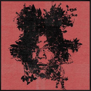 Basquiat Framed Poster