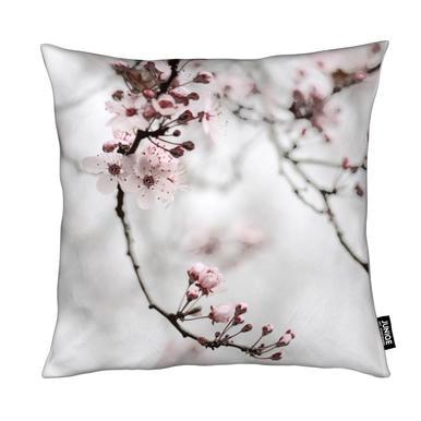 Cherry blommor dating promo kod