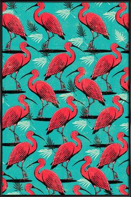 Scarlet Ibis Framed Poster