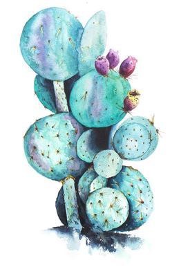 Cactus Love -Alubild