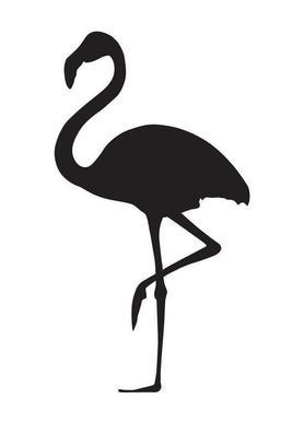 Flamingo canvas doek