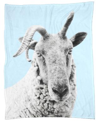 Blue Sheep plaid