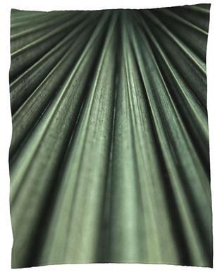 Green Palm plaid