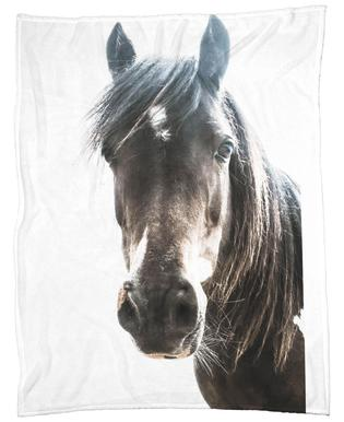 Horse plaid