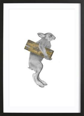 Florence Williamena Snowshoe Hare Framed Print