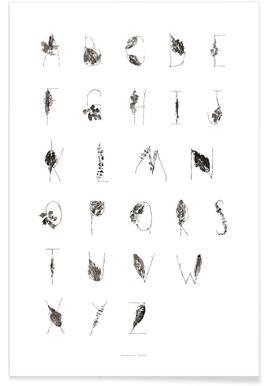 ABC - Alphabet en feuilles affiche