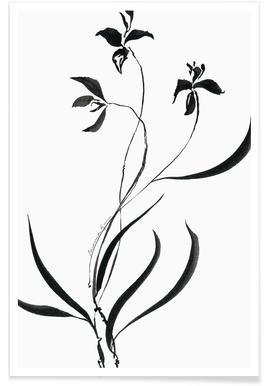 Orchid 1 affiche