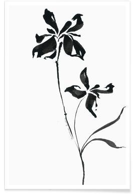 Orchid 3 affiche