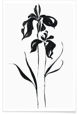 Orchid 4 affiche