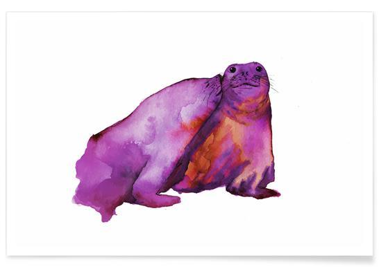 Seals Watercolour Poster