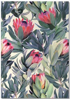 Painted Protea Pattern Notitieboekje