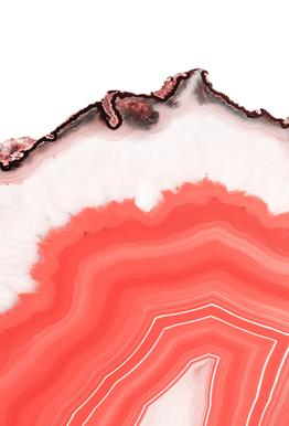 Living Coral Agate -Alubild