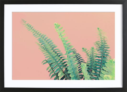 Ferns on Blush Prints ingelijste print
