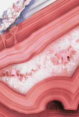 Agate Living Coral -Acrylglasbild