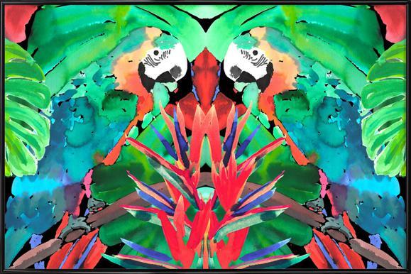 Parrot -Bild mit Kunststoffrahmen