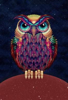 Owl 2 -Alubild