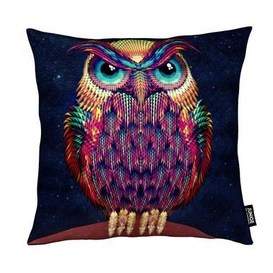 Owl 2 Kussen