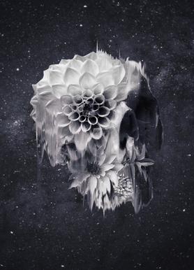 Decay Skull Impression sur toile