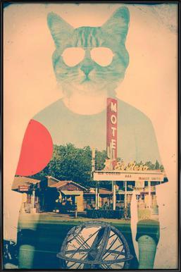 Cool Cat Framed Poster