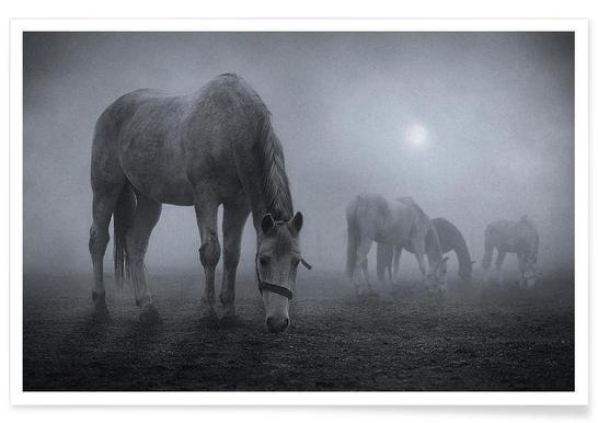 Moonlit - Samuel Málach Poster