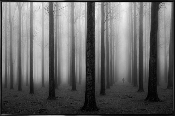 In a fog - Jochen Bongaerts -Bild mit Kunststoffrahmen