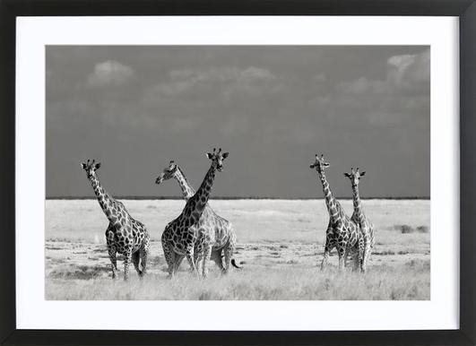 Look Girls, There Is Strange Animals - Mathilde Guillemot Affiche sous cadre en bois