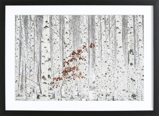Buy Framed Prints and Framed Wall Art Online | JUNIQE UK