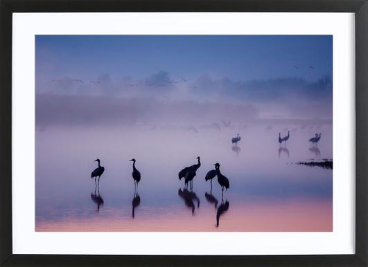 Enchanted Serenity - Meizner Framed Print