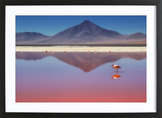 Dancing Queen - Dirk Heckmann Framed Print