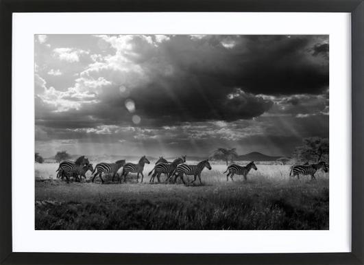 Buy Framed Nature Prints and Art Online | JUNIQE UK