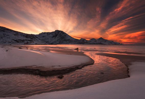 Golden Sunset Acrylglasbild