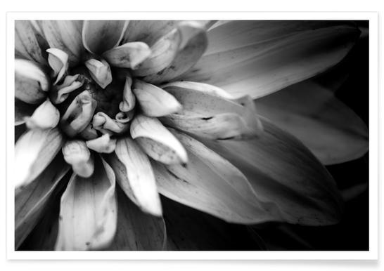 Flower I affiche
