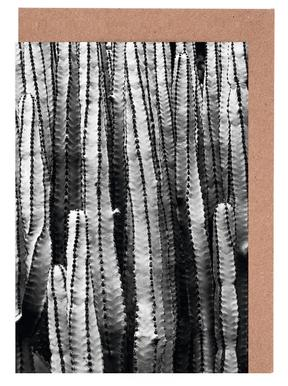Cacti wenskaartenset