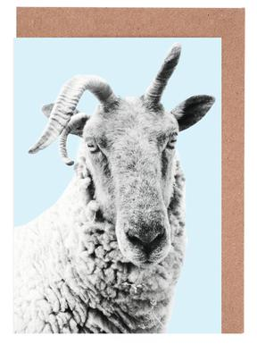 Blue Sheep cartes de vœux
