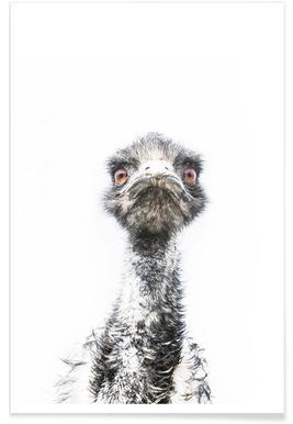 Emu affiche